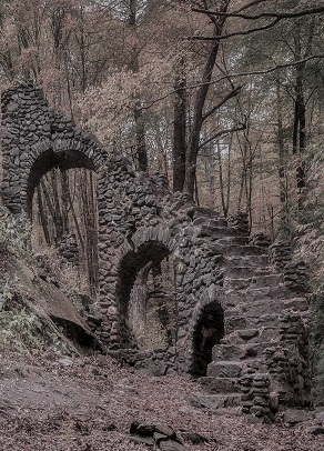 stairs in woods.jpg