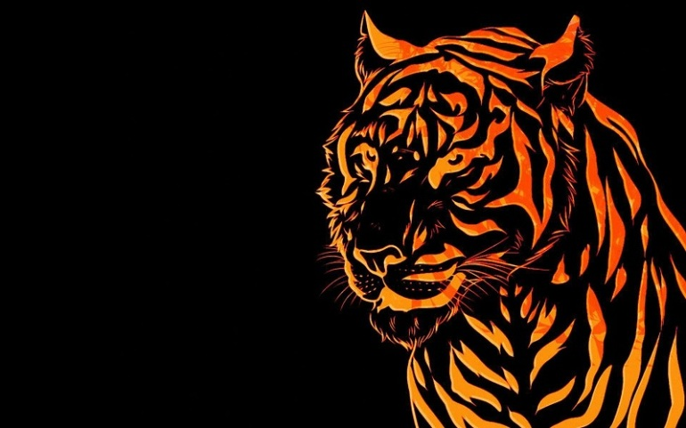 tiger wallpaper3